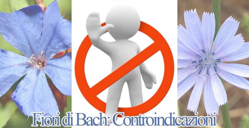 fiori di Bach controindicazioni