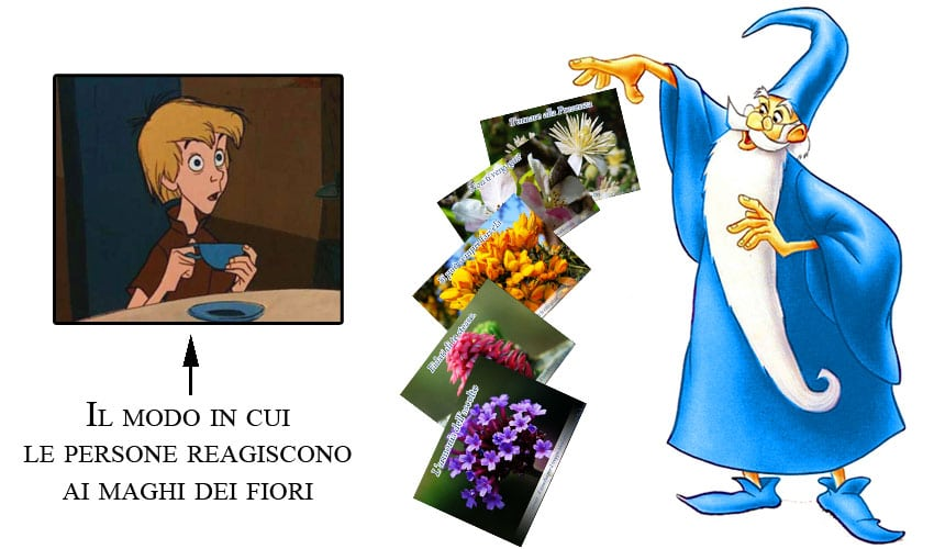 maghi dei fiori di Bach