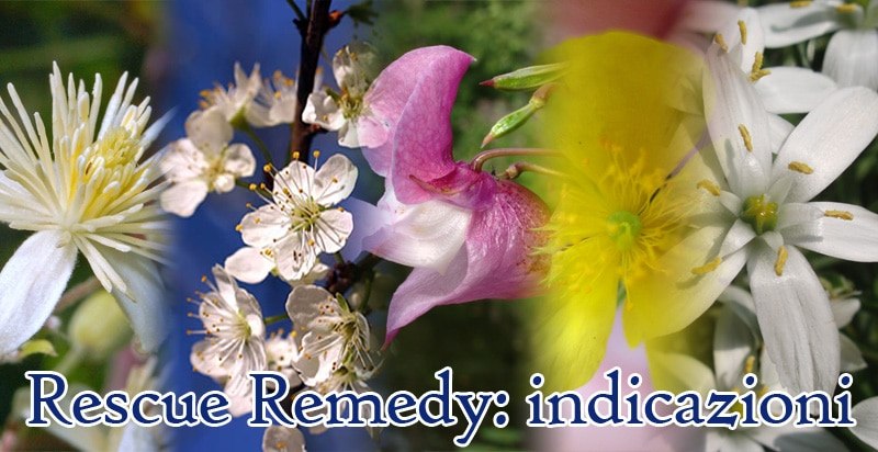 rescue remedy fiori di bach