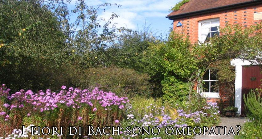 i fiori di bach sono omeopatia