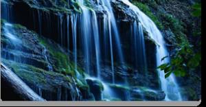 rock water fiori di Bach