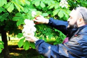 floriterapia transpersonale evolutiva