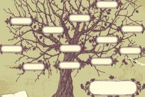 floriterapia transpersonale evolutiva albero genealogico