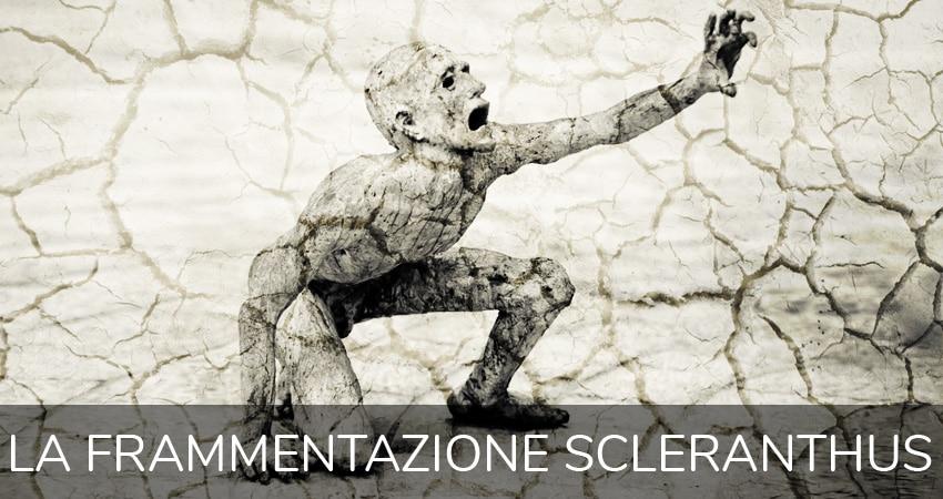 L'esperienza della frammentazione Scleranthus