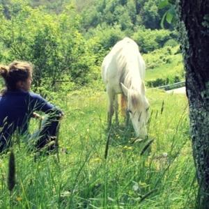 Floriterapia transpersonale evolutiva® testimonianze Eva Tarricone