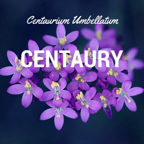 fiori di Bach Centaury