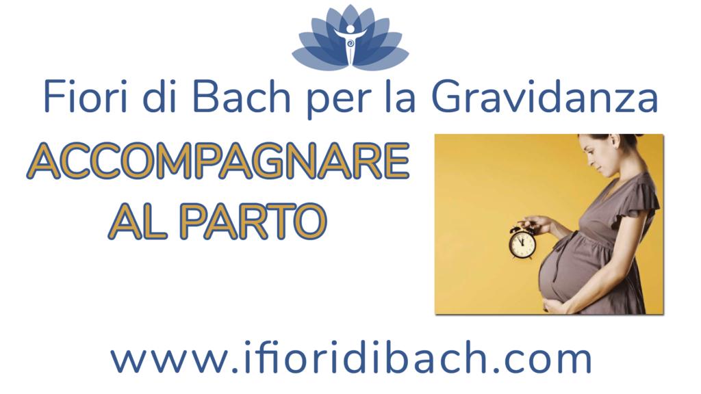Accompagnare al parto con i Fiori di Bach