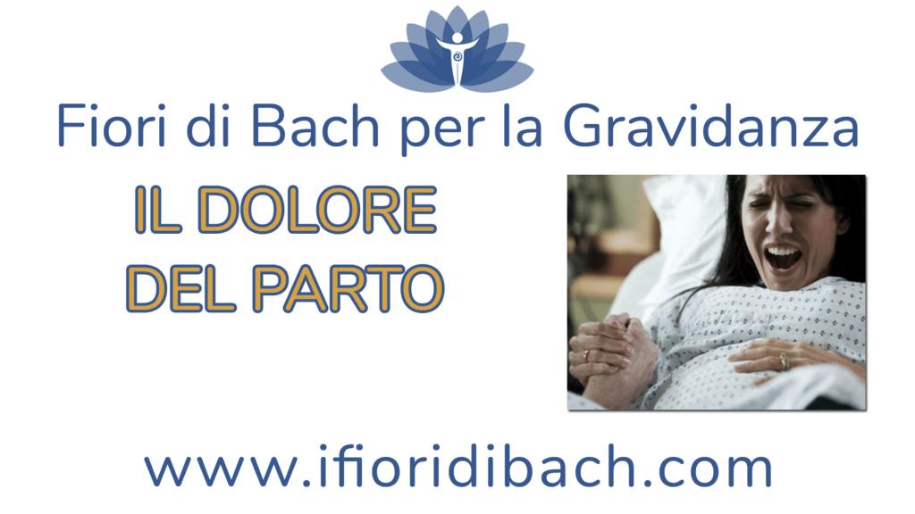 Dolore del parto: come affrontarlo con 5+1 fiori di Bach
