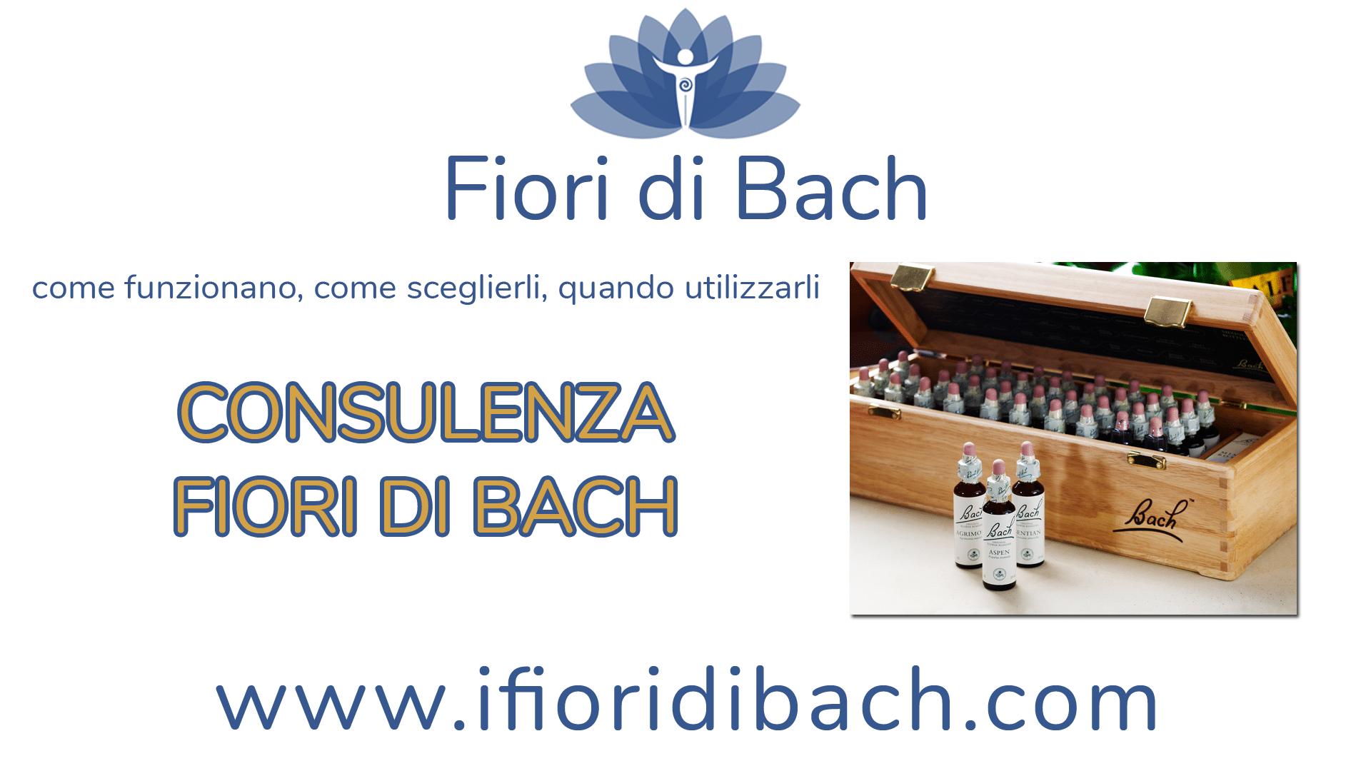 Consulenza fiori di Bach