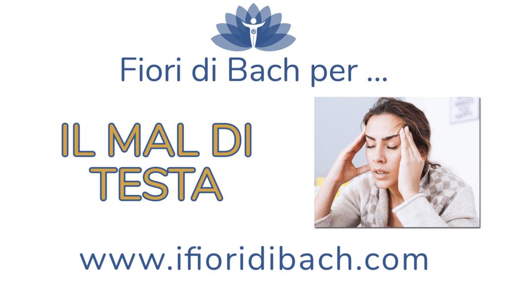 I fiori di Bach sono rimedi che agiscono sulle emozioni. Vanno quindi somministrati, come spiego nel video, non per il mal di testa, ma per le emozioni che provi quando hai mal di testa.   Ognuno di noi, infatti, reagisce diversamente ai disturbi e quindi ci sarà la persona che si intristisce per via del mal di testa, ci sarà la persona che si arrabbia.  Usare i fiori di Bach è facile se si segue questo principio.